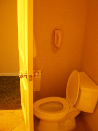DoubleTree by Hilton Hotel Campbell - Pruneyard Plaza: Toilet bowl...