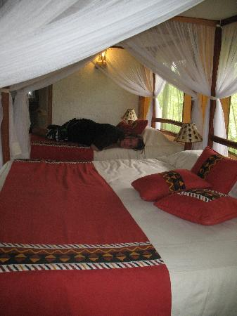 Wildlife Kenya Safaris - Day Trips: ons verblijf: tentencamp