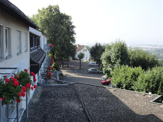 Berghotel Rheinblick: View from balcony