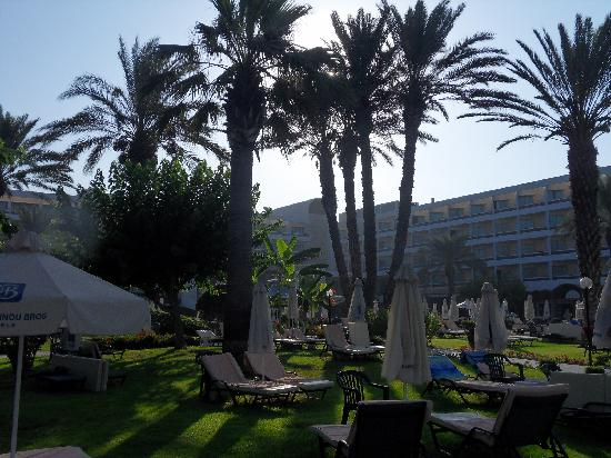 Constantinou Bros Pioneer Beach Hotel: sunrise over the hotel