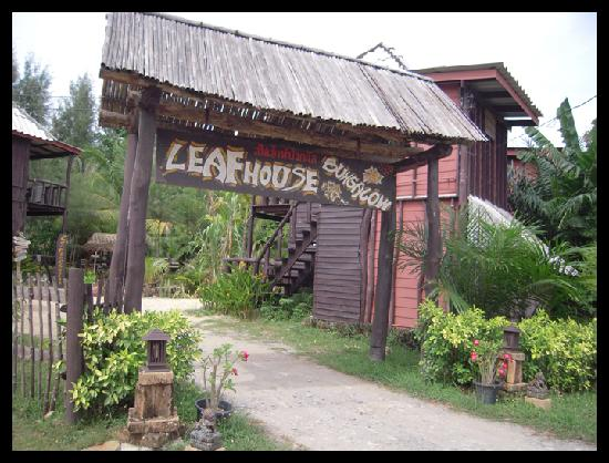 Leaf House Bungalow: Eingang