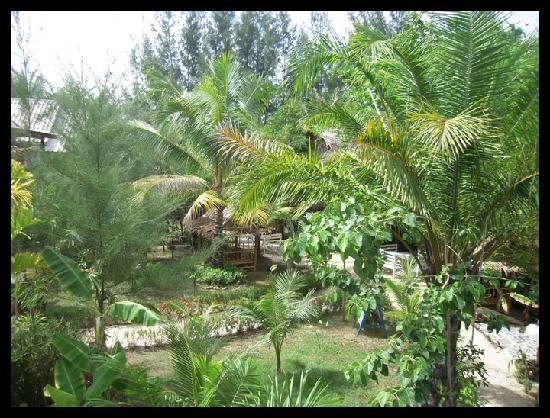 Leaf House Bungalow: Garten