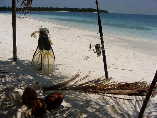 Blue Heaven: pesca, snorkeling e isole indimenticabili