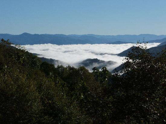 Appalachian Inn: Above the clouds in Smoky Mountains.