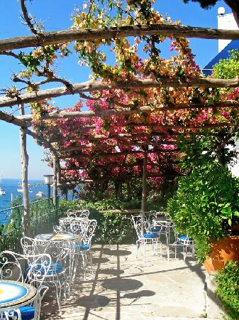Hotel Aurora: Breakfast patio