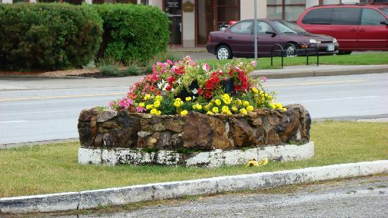 Log Cabin Motel: Beautiful flowers throughout the property