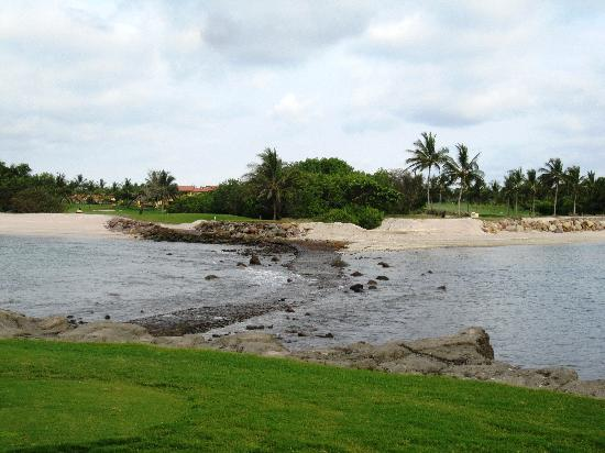 Punta Mita Golf Course: Tail of the Whale