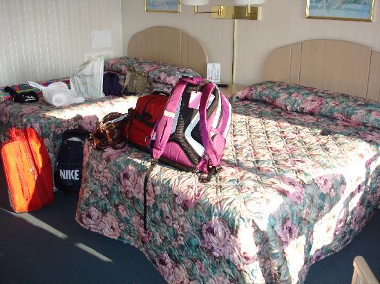 Empress Motel : The room