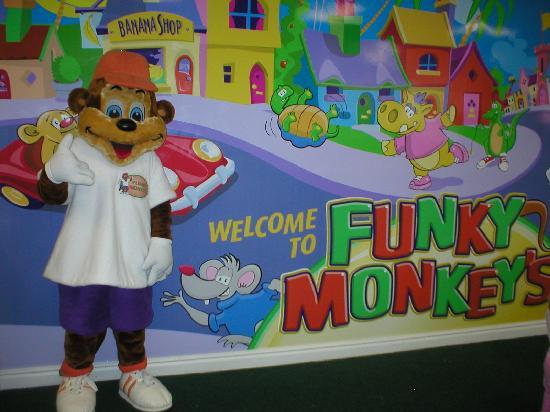 Funky Town: Funky Monkey