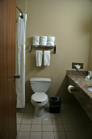 Holiday Inn Express Hotel & Suites Dallas/Stemmons Fwy(I-35 E): bathroom