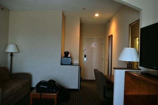 Holiday Inn Express Hotel & Suites Dallas/Stemmons Fwy(I-35 E): room 343