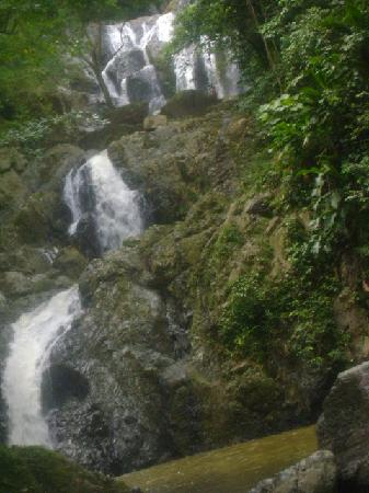 Scarborough, Tobago : Argyle Waterfall