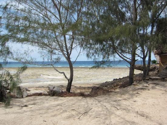 Chumbe Island Coral Park: Beach view from banda
