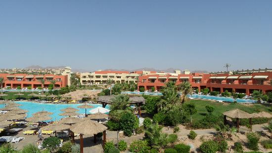 Coral Sea Holiday Village: the view of the quiet pool from block 10