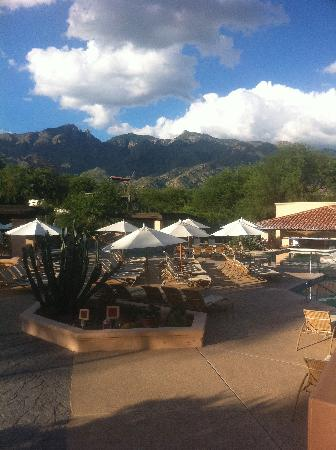 Westin La Paloma Resort and Spa: Have breakfast on the patio