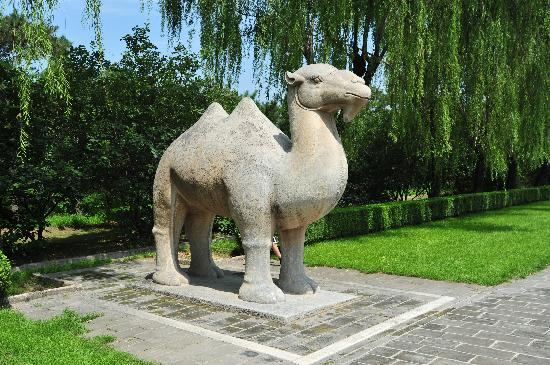 Ming Tombs (Ming Shishan Ling): Didn't feel like a tourist stop - very peaceful