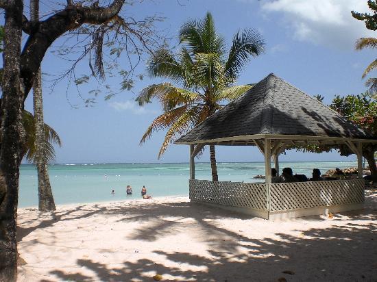 Pigeon Point Beach: beach