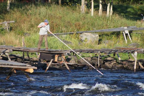 Kukkolaforsen: Middle age fishing
