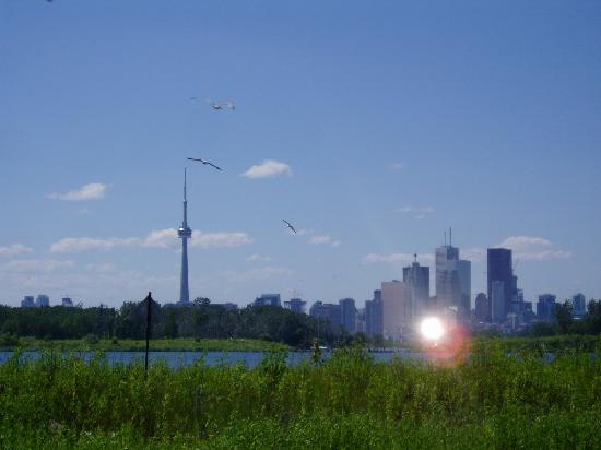 โตรอนโต, แคนาดา: View of the city from Tommy Thompson Park