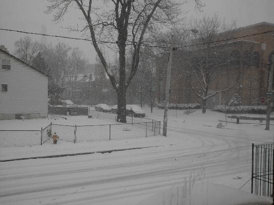 โตรอนโต, แคนาดา: Last snow of 2011 (downtown Toronto)