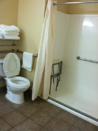 Quality Inn: toilet and shower