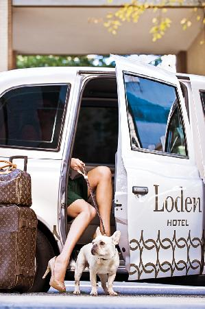 Loden Hotel: Pet Friendly