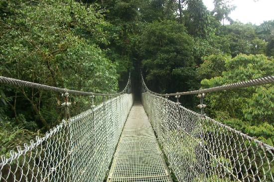 San Carlos, Kostaryka: puente