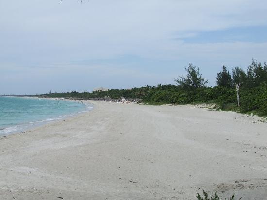 Naviti Varadero: Playa del hotel