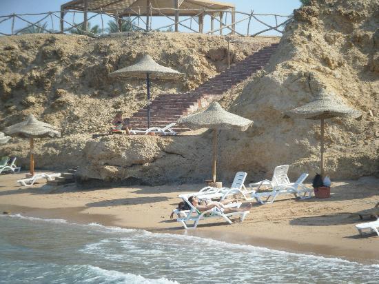 Club Reef Resort : caletta