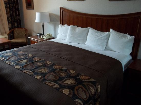 Raintree Inn: Standard Room with king bed