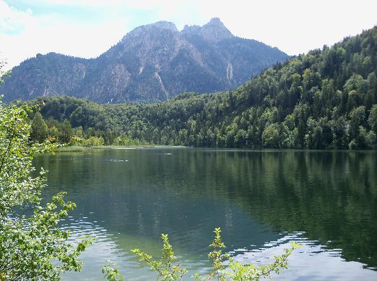 Bus Bavaria Neuschwanstein Castle Tours: Swan Lake