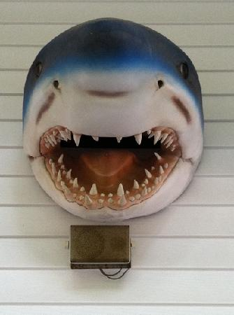 Shark's Custard & Candy Inc: Sharkie above the side porch door.
