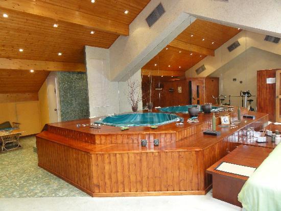 Hotel et Restaurant Le Bourgogne: Spa