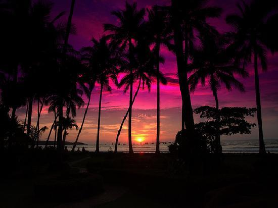 ‪أوترو لادو لودج آند رسترونت: Costa Rica sunset - best in the world!‬