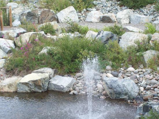 Denali Princess Wilderness Lodge: so pretty