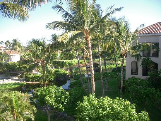 Aston Shores at Waikoloa: ラナイから中庭を望む