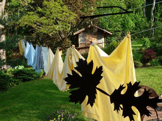 Highgarden B&B: Monivea B&B Linens