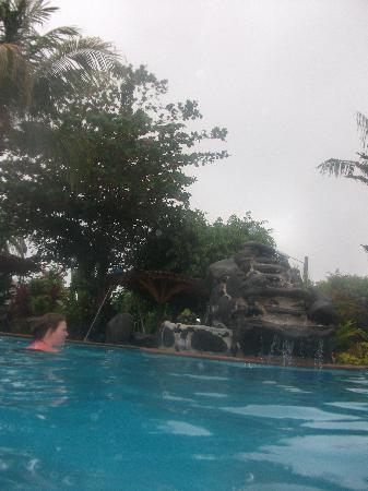 In the pool with some of the surrounding greenery.