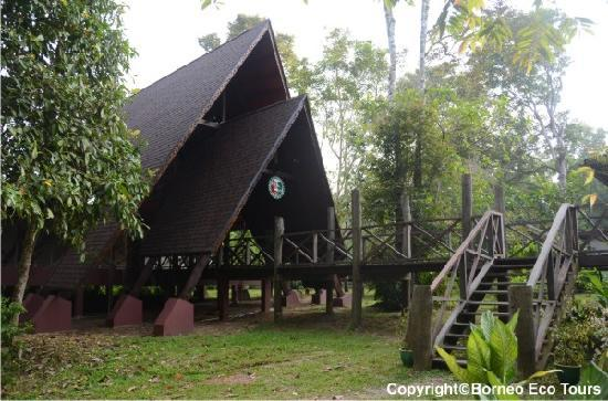 Sukau Rainforest Lodge: Gomantong Hall - Renovated in 2011
