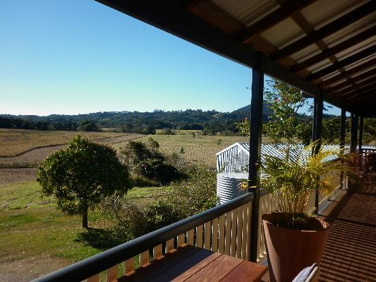 Eumundi Gridley Homestead B&B : Gridley Homestead B&B - view out the back