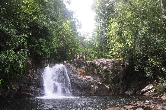 ‪‪Sinharaja Forest Reserve‬: Waterfall and pool‬