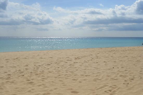 Hotel Atlantis Dunapark : Spiaggia delle dune