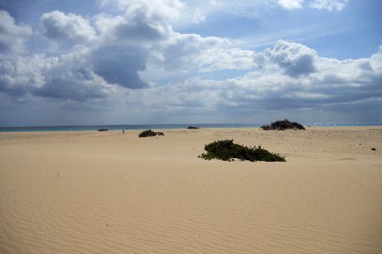 Hotel Atlantis Dunapark: Spiaggia delle dune