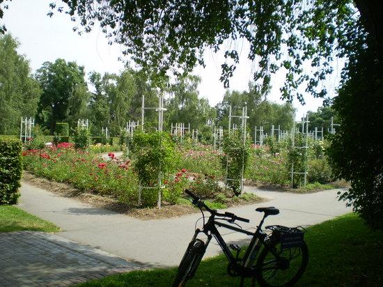 PREkolo: Petrin park