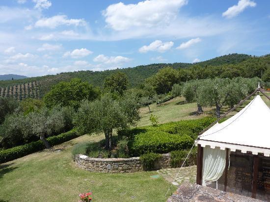 Villa San Crispolto: Views from the Villa