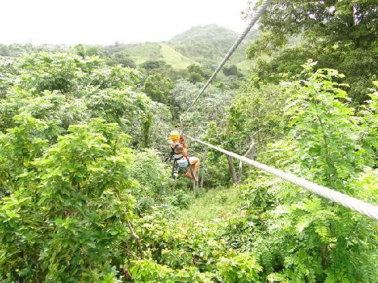 Canopy Adventure Zip Line Tours & Canopy Adventure Zip Line Tours (Punta Cana) - All You Need to ...