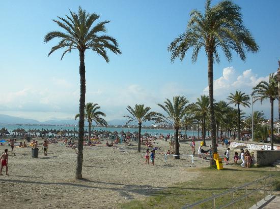 El Arenal, إسبانيا: El Arenal