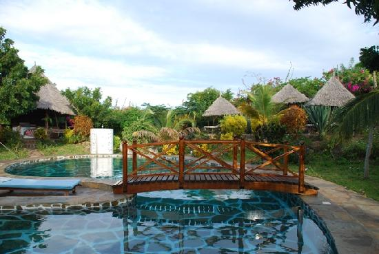 Swimming Pool And Garden Picture Of Marine Holiday House Malindi Tripadvisor