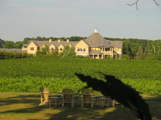 Riverbend Inn and Vineyard: View of Peller Estate from our room.