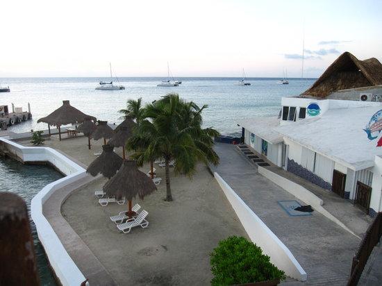 Del Mar Aquatics
